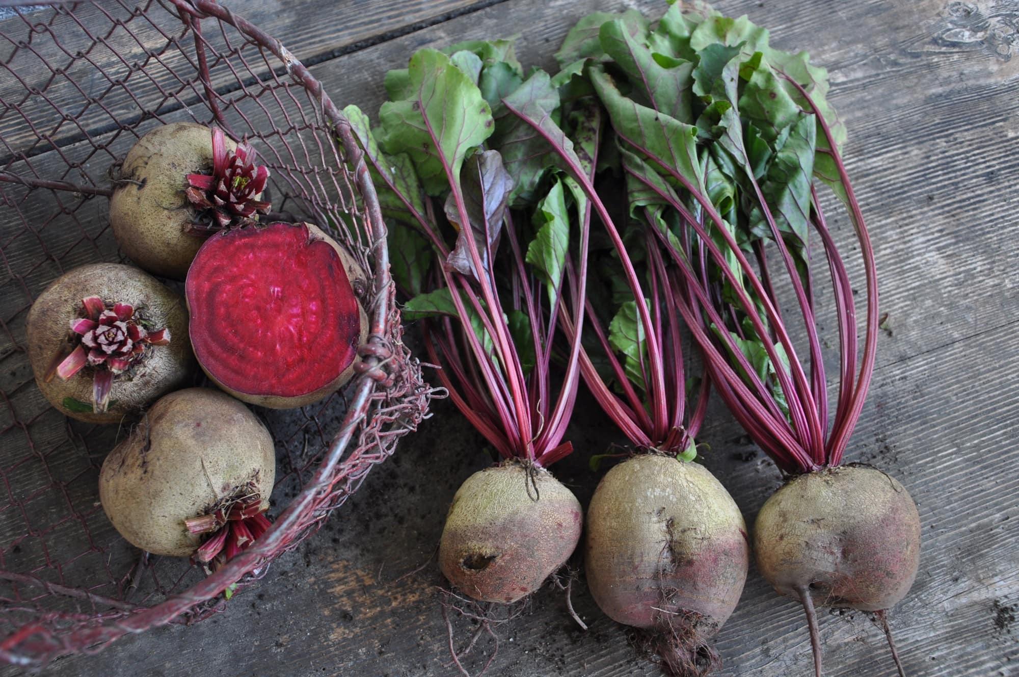 Rote Rueben Peakini Farmhaus Web - PEAKINI WINTERPROVIANT: Rote Rüben Saft